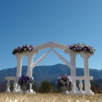 We Have Many Decorations for Your Wedding