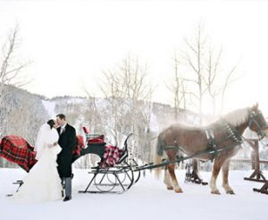 Winter Wedding Ideas Smoky Mountains