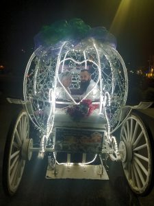Smoky Mountains Carriage Weddings